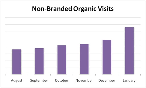 Non-branded Organic Traffic Chart