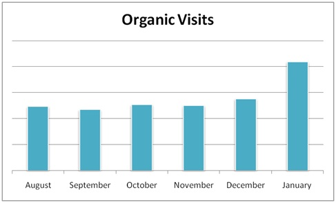 Organic Traffic Graphic