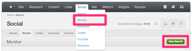 Social Monitor New Search 1