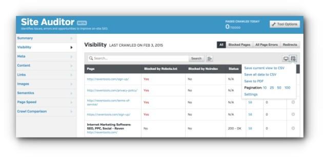 Website Auditor Custom Report