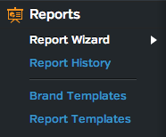 Raven Report Wizard