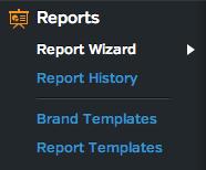 Raven Report Wizard