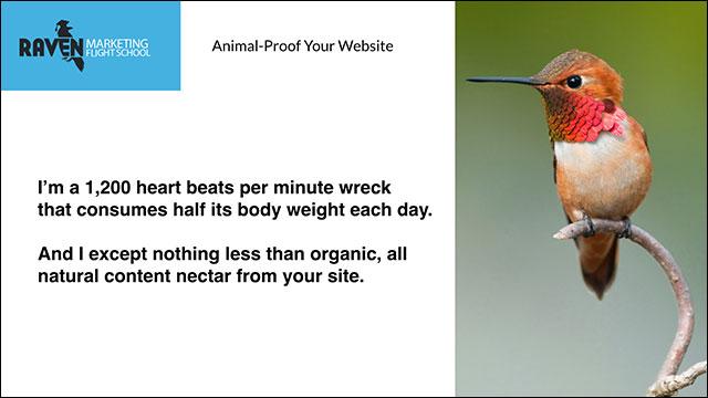 Hummingbird Quote