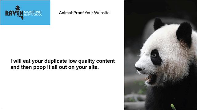 Panda Quote