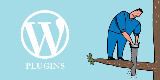 WordPress Plugin Risk