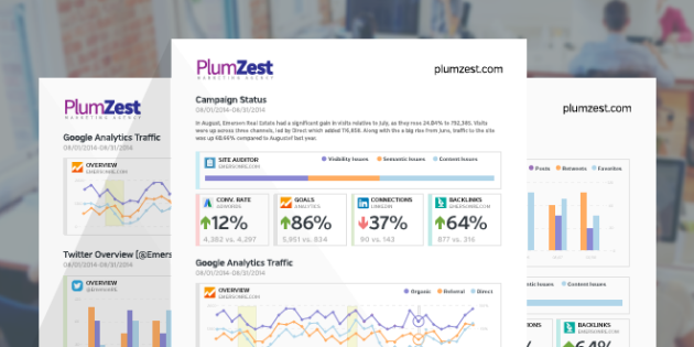 New Feature: Custom, Interactive, Beautiful Online Marketing Reports
