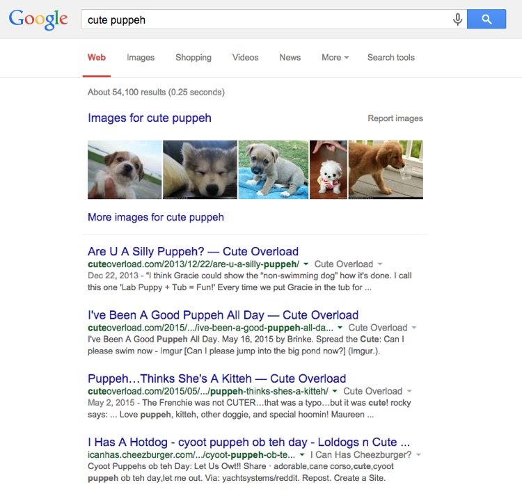 search results for cute puppeh